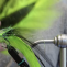 Vídeo de pesca: Streamers para lucio