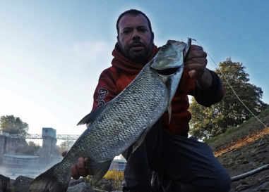 La pesca de aspios en la República Checa