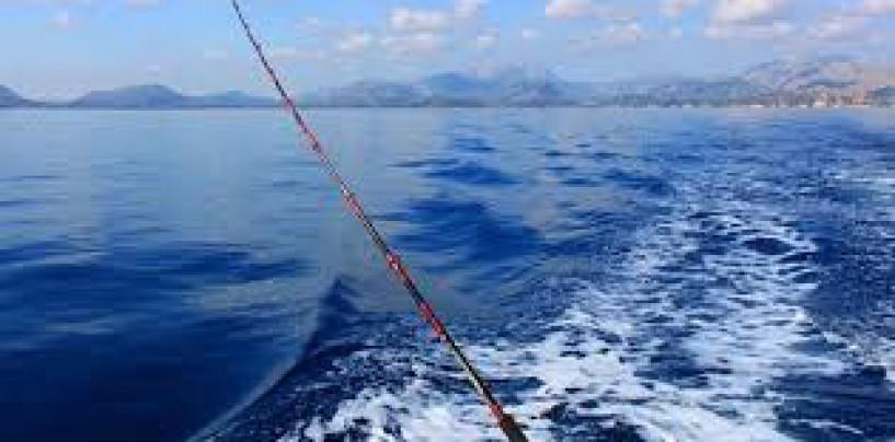 Pesca a curricán para principiantes