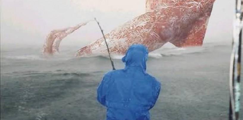 Un poco de tinta, en la pesca del calamar