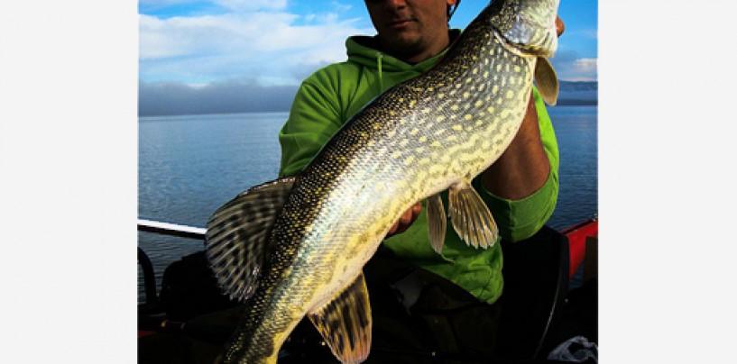 La foto de pesca de Javier Zarza ganadora de la semana 22