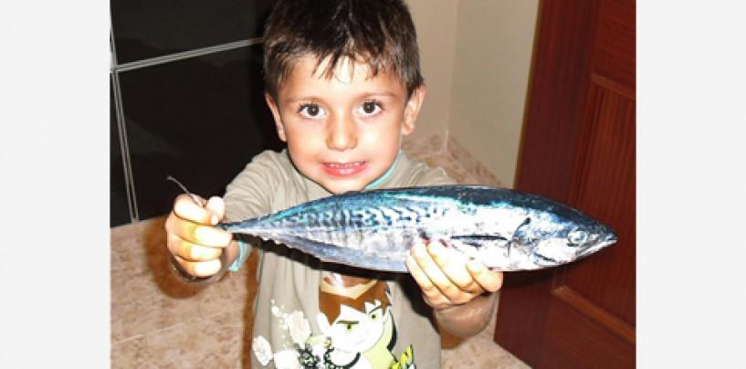 Las fotos de pesca ganadores de la semana 24