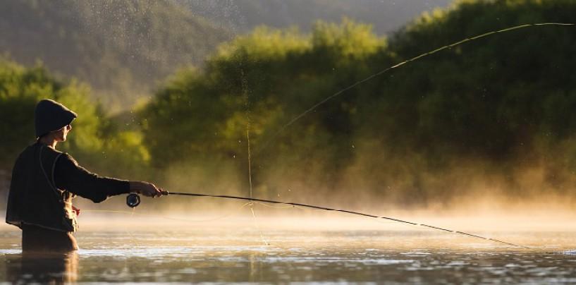 ¡Pesca a mosca con Caddis cola roja!