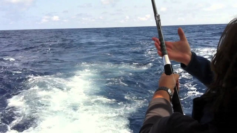 pesca del bonito