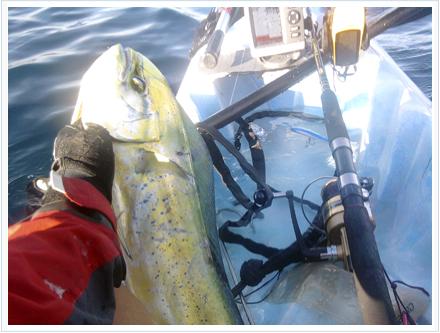 Pesca llampugas de kayak de pesca a currican