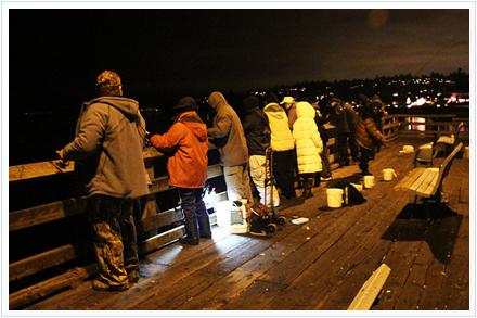 Pesca de calamares