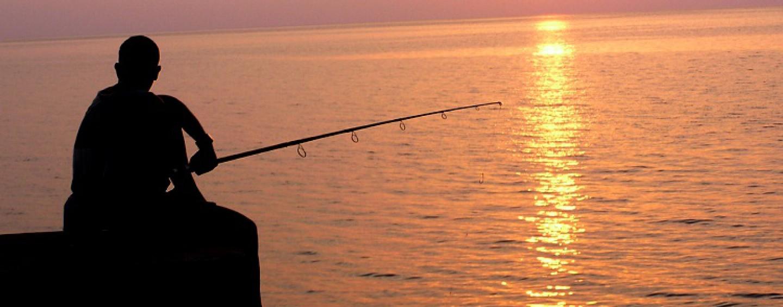 Pezcador al día, principales noticias de pesca (Enero 2017, 4)