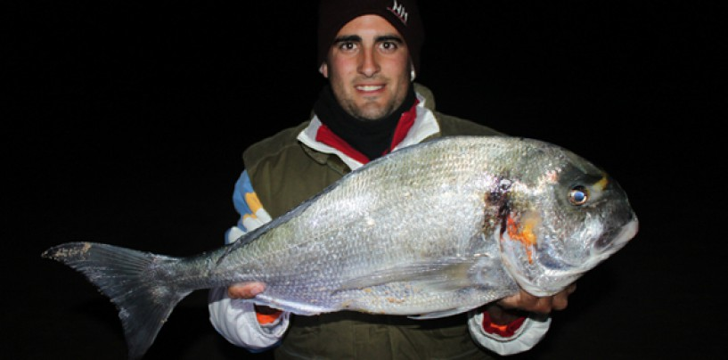 Encuentro Digital sobre la pesca a surfcasting de doradas con Roque Navarro