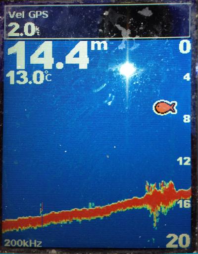 Color en las sondas de pesca