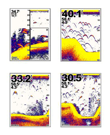 Foto Media Luna en las sondas de pesca