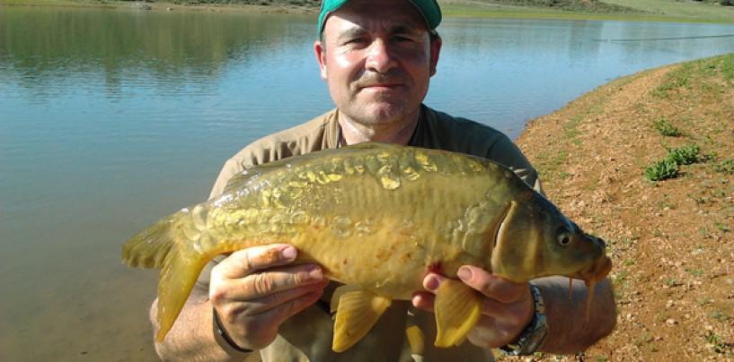 6 consejos para pescar carpas a fondo
