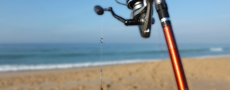 ¿Conoces las claves para pescar lubinas a surfcasting?