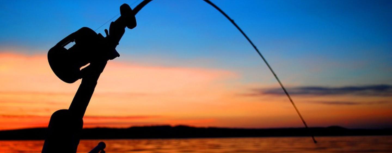 ¿Cómo iniciarse en la pesca con profundizador o «Drownriger»? ¿Por qué se pesca más con profundizador?