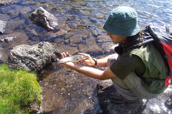 Toni Martínez nos da algunos consejos para practicar la pesca de la trucha en alta montaña.