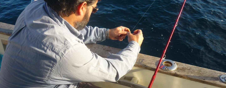 La pesca de julia o doncella: una fábrica de pescadores