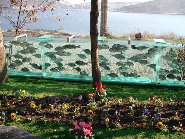 Muro-acuario en Turquía. Fotos Lainformación.com