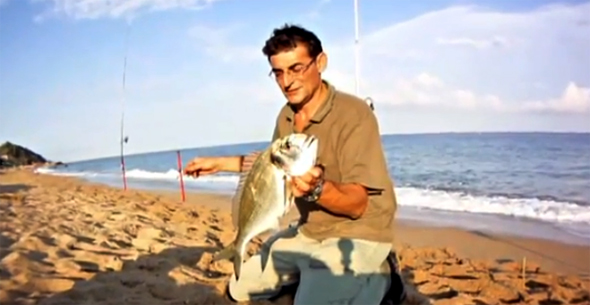 ¿Cómo pescar una dorada a surfcasting?