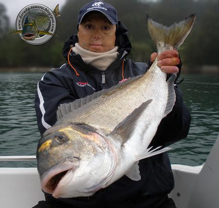 Water Tanero, expert en pescar doradas.