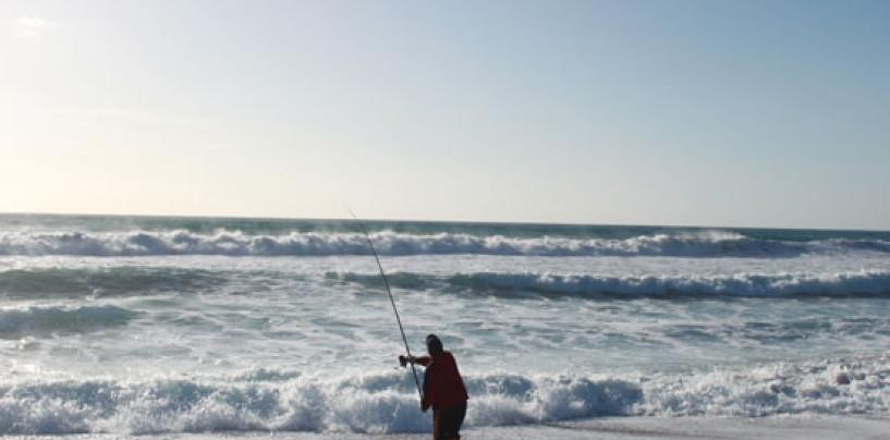 Pesca surfcasting en cada escenario