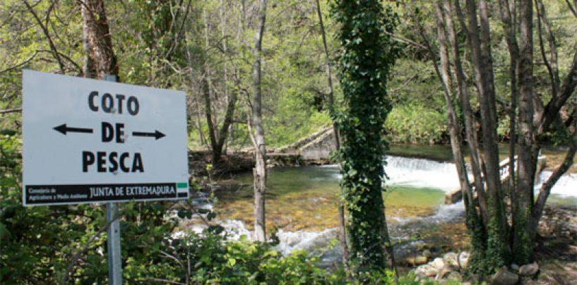 Los ríos trucheros de España (III): El río Jerte