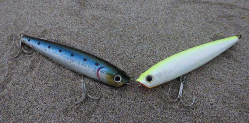 Consejos para la pesca a spinning marítimo en verano