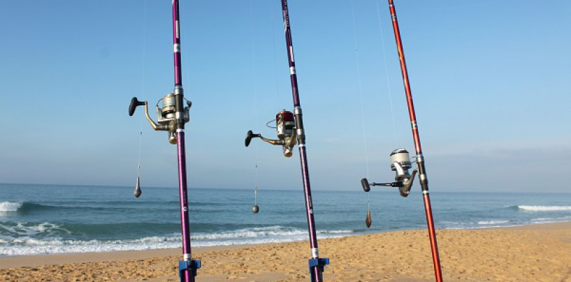 Mejores sitios para pescar en Málaga