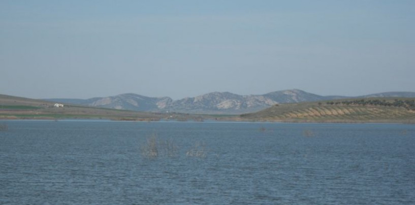 Concurso de Pesca Black Bass de orilla. Aldea de Rey 2014