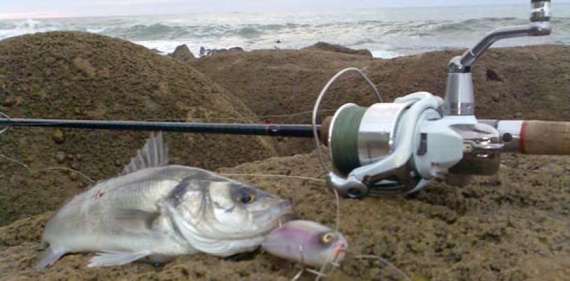 Como mantener las anillas de tu caña de pesca a salvo de la salitre