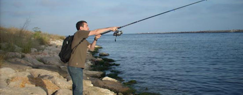 Pesca de lubina con angula, atracción fatal