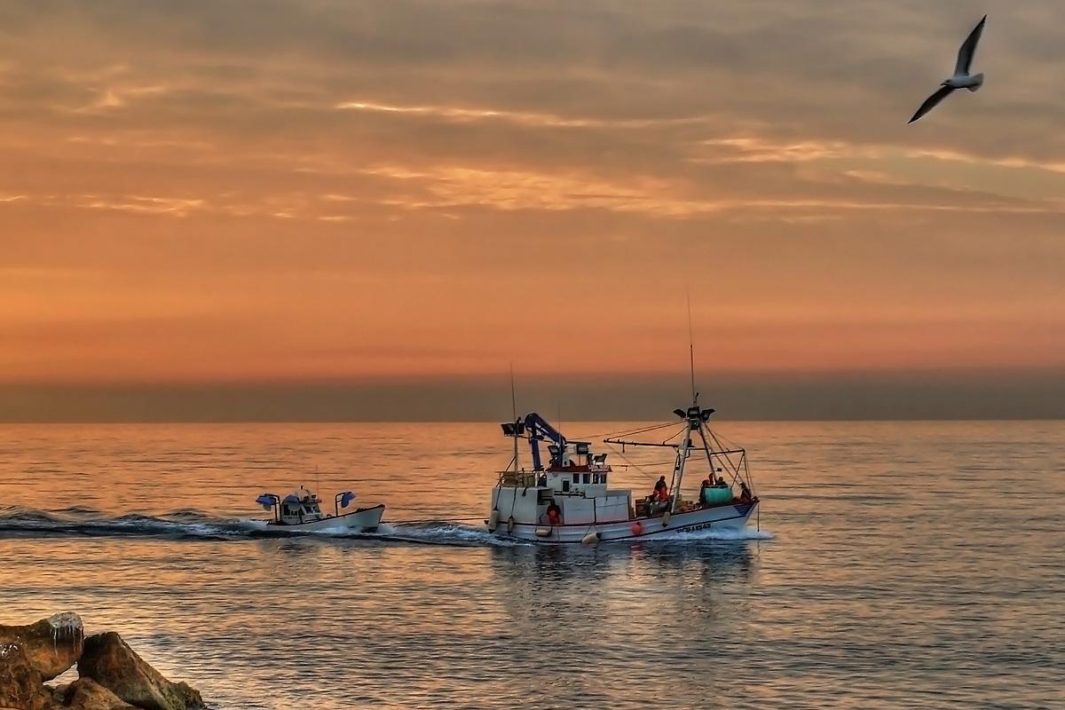 pesquero_de_regreso_a_puerto