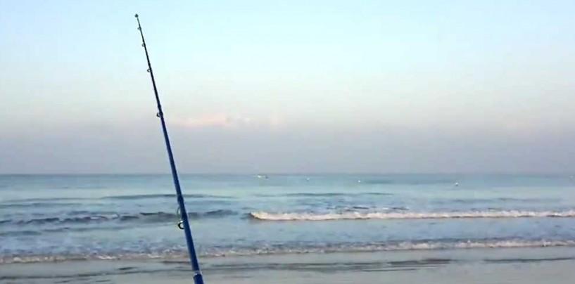 Análisis de la caña de pesca surfcasting