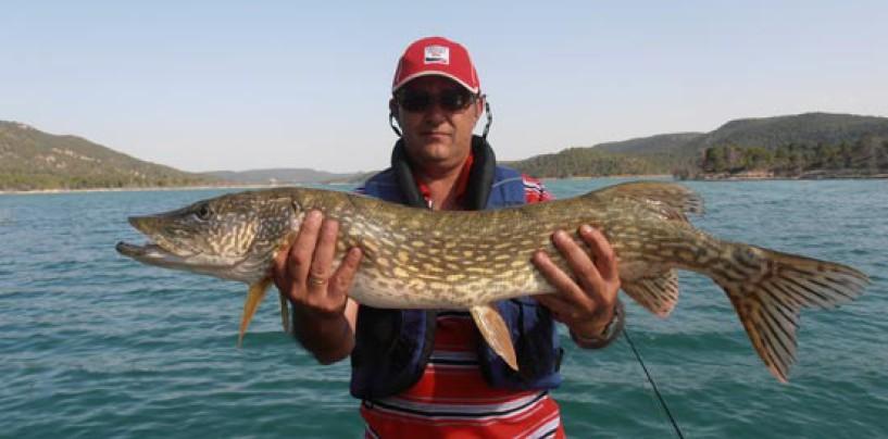 Material necesario para la pesca de lucios y luciopercas