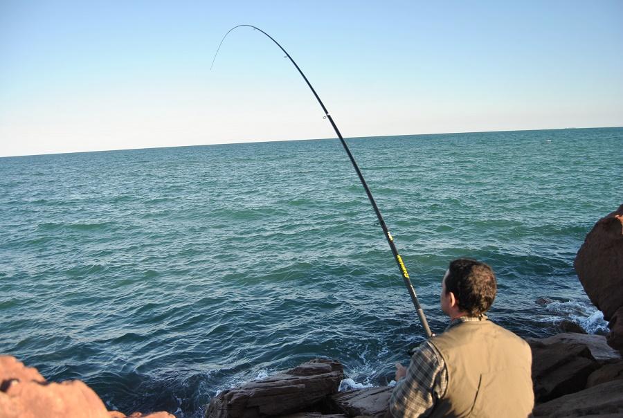 técnica para la pesca de sargos al toque