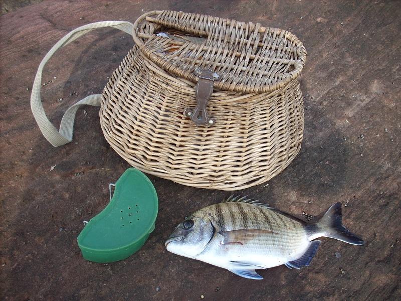 equipo para la pesca de sargos al toque