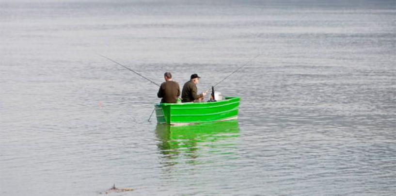 Pezcador al día, principales noticias de pesca (Febrero 2015, 1)