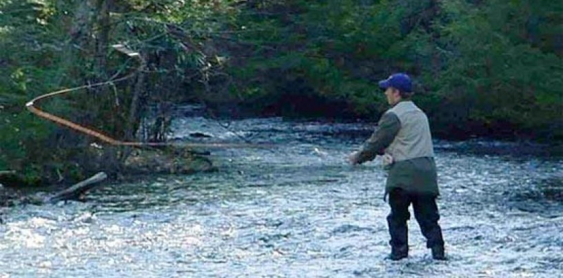 La pesca en La Rioja en 2015: los cupos y la obtención de licencia