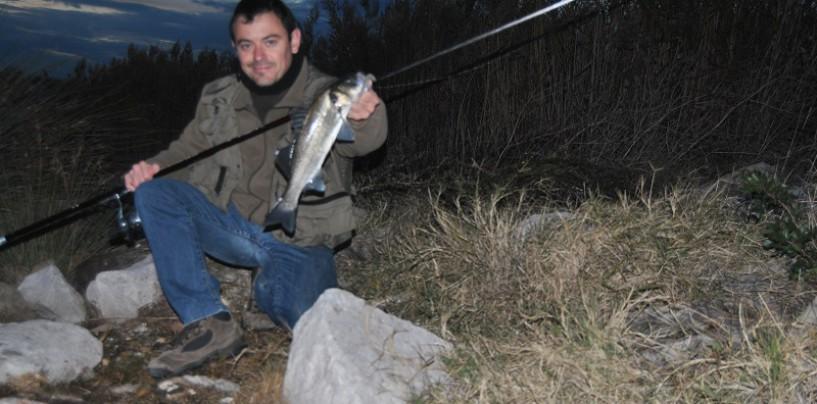 El señuelo perfecto para la pesca de lubina a spinning nocturno