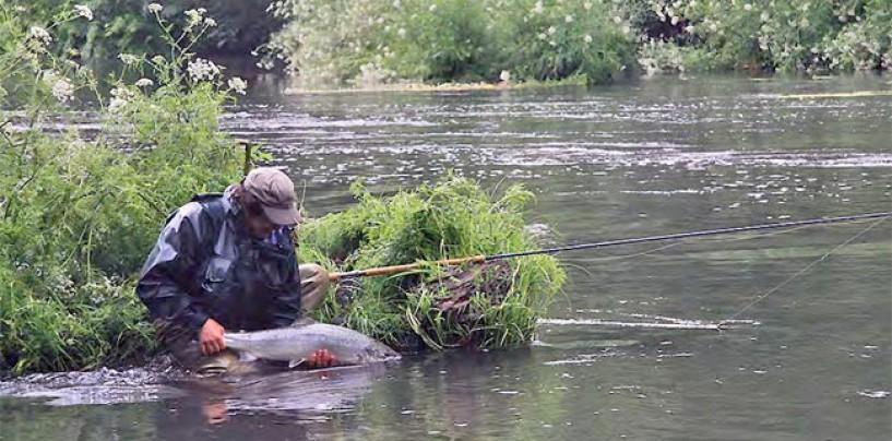 Cómo sacar la licencia de pesca de Navarra