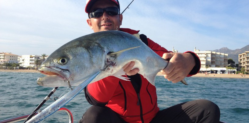 Anjovas a spinning embarcado la teoría y práctica de su pesca a lance