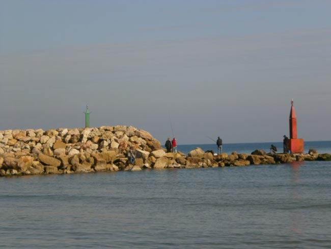 espigon-pesca-serranos