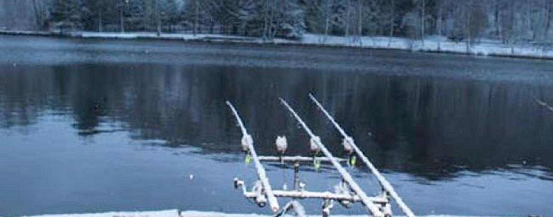 Qué tenemos que tener en cuenta para pescar carpas en invierno