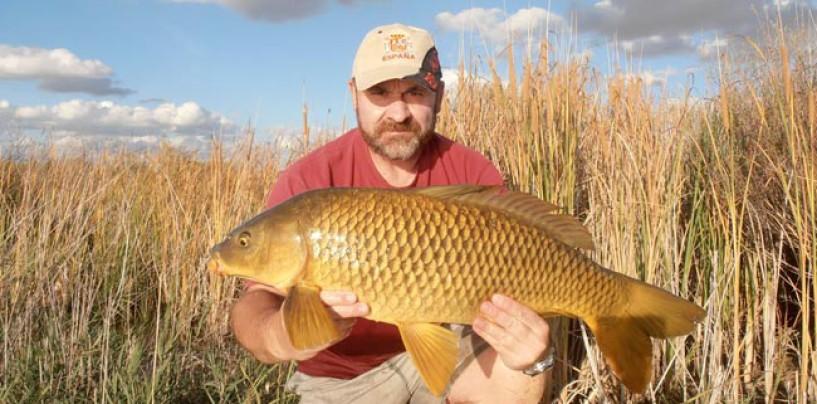 También se puede pescar grandes carpas con pocos medios