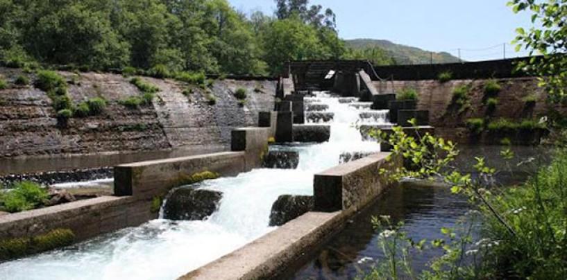 Los ríos salmoneros de España (II): El salmón en el río Lérez