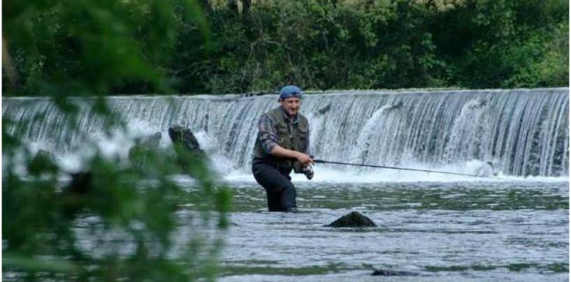 Los ríos salmoneros de España (III): El salmón en el río Ulla