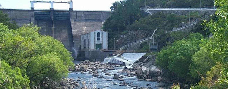 Los ríos salmoneros de España (IV): El salmón en el río Tambre