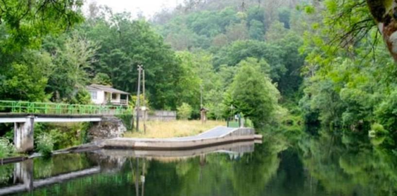 Los ríos salmoneros de España (VI): El salmón en el río Mandeo
