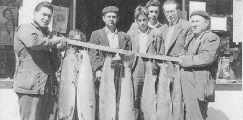 Los ríos salmoneros de España (XIII): El salmón en el río Navia, prisionero y mermado por el hormigón