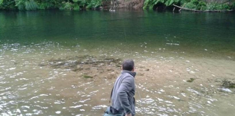 Los ríos salmoneros de España (XV): El salmón en el río Esva, cuando el hombre puede ayudar a la recuperación