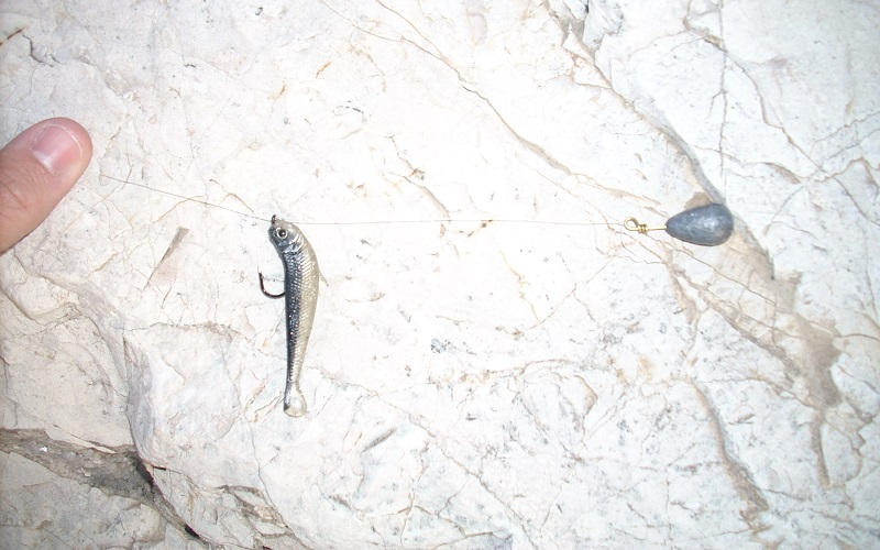 pescar lubinas a drop-shot
