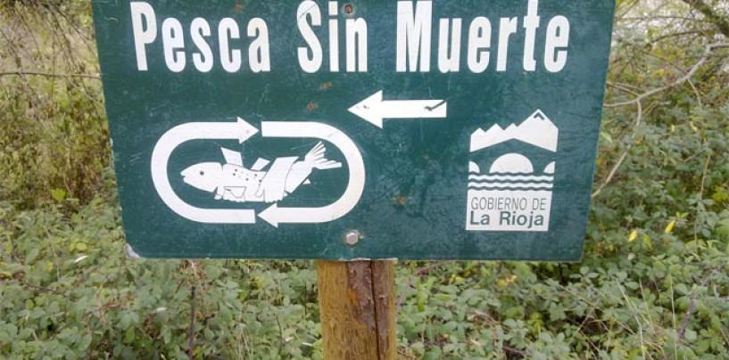 Pros y contras de las medidas para proteger las poblaciones piscícolas por parte de la Administración